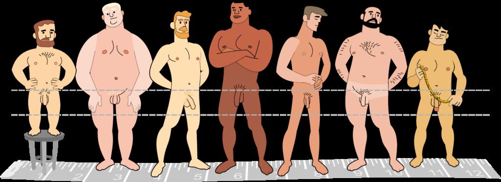 Penis Grösse / Abbildung mit verschiedenen Männern, Körpertypen, Hautfarbe und Penisgrössen